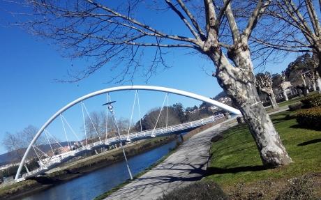 Poda de Arboles en Pontevedra