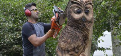 chainsaw feber art - esculturas con motosierra