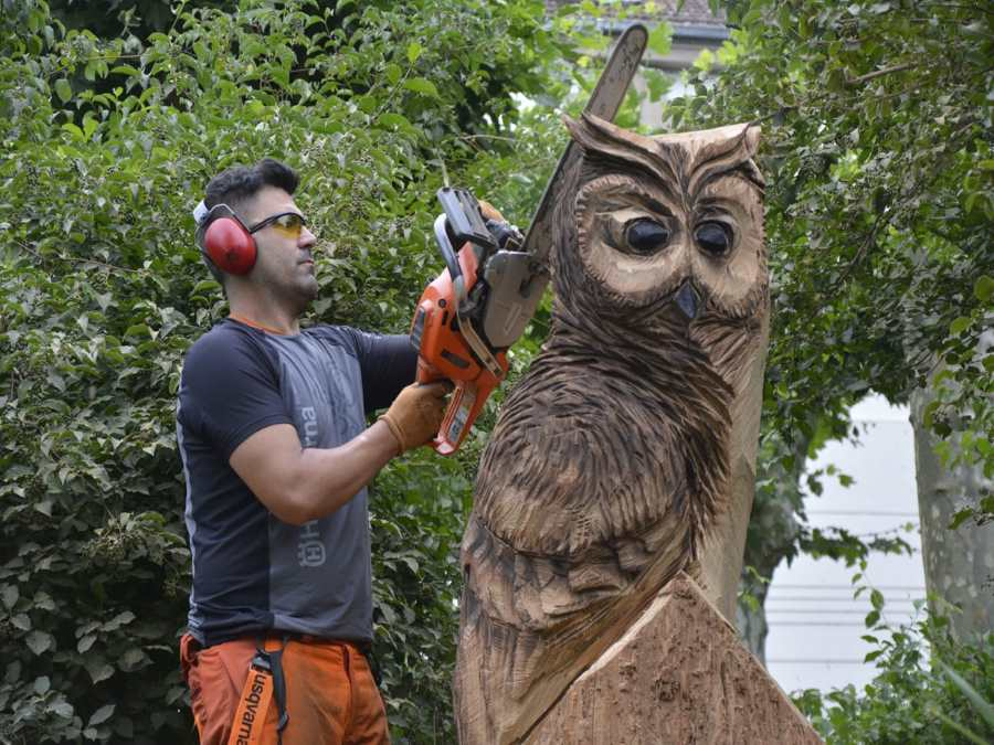 chainsaw feber art - esculturas con motosierra_figuras en madera