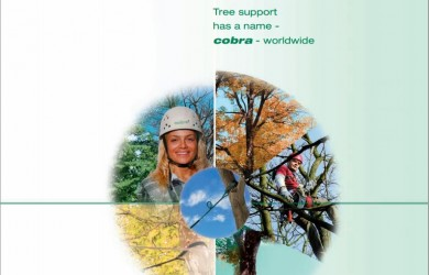 cobra-tree-bracing