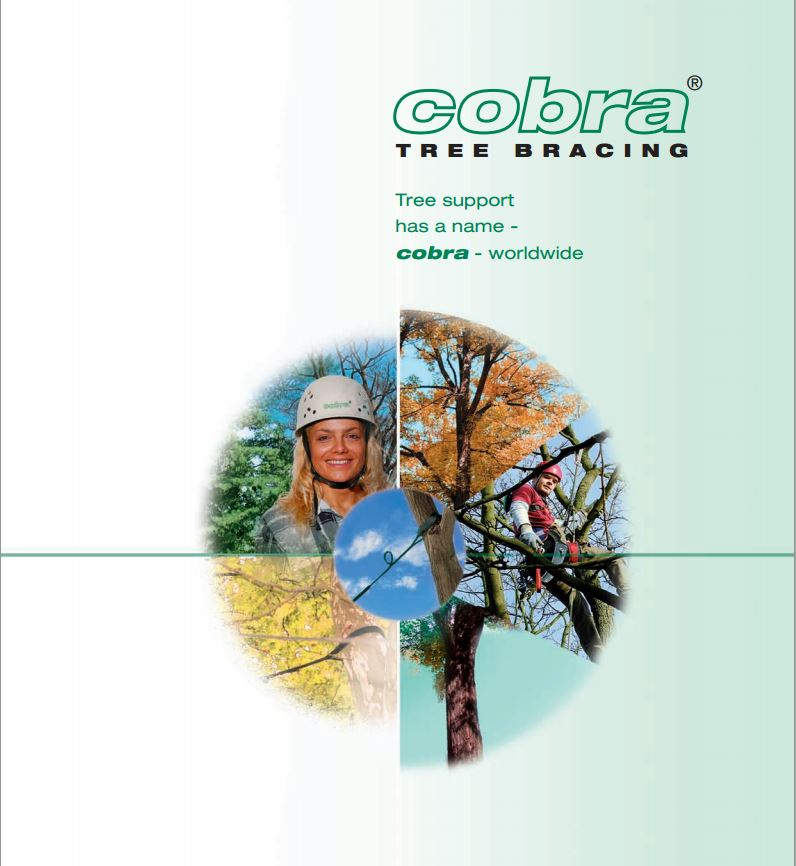 cobra-tree-bracing