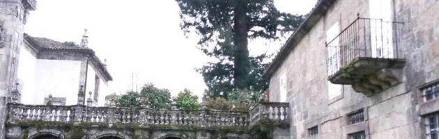 valoracion-arbolado-sequoia-pazo