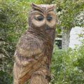chainsaw escultura a motosierra buho ourense_figuras en madera