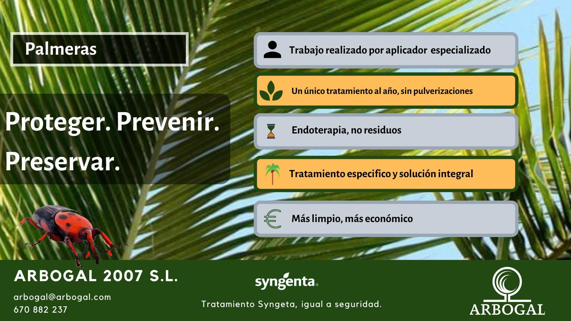 tratamiento integral contra el picudo rojo en palmeras